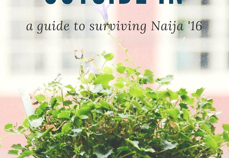 a guide to surviving Naija '16